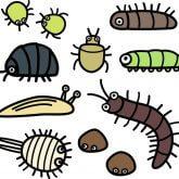 害虫・腐敗臭の清掃